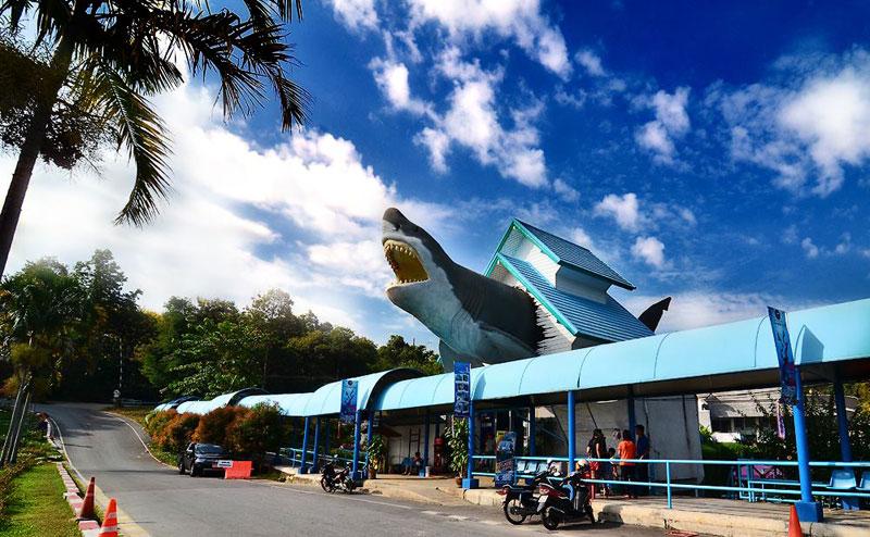 chiang-mai-zoo-aquarium-2
