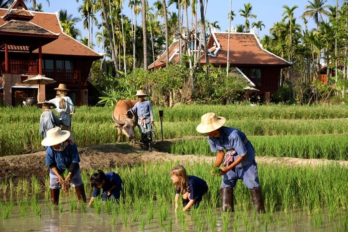 40_Kids_Rice_Planting