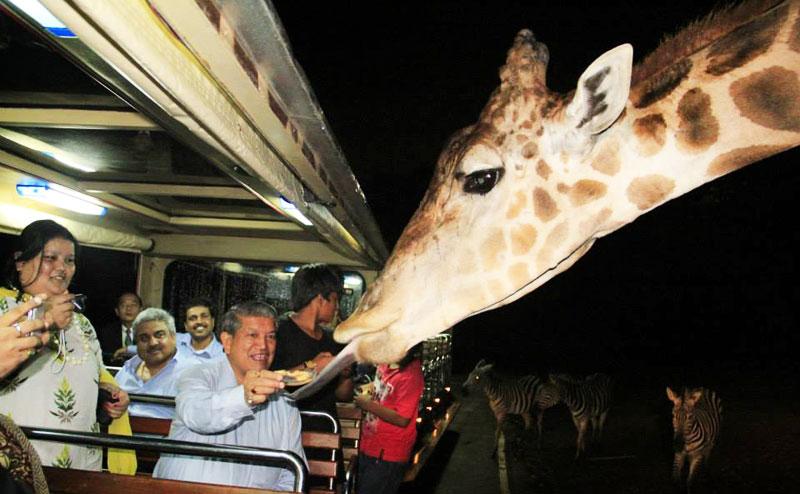 chiangmai-night-safari-5
