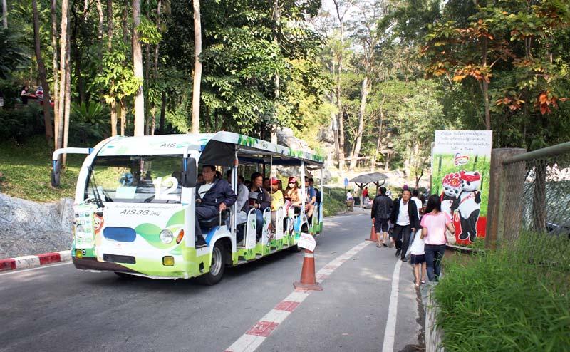 chiangmai-zoo-18