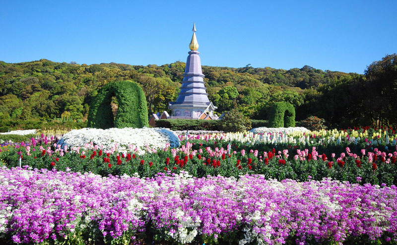 doi-inthanon-national-park-tour-chiangmai-16