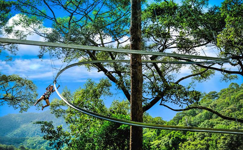 jungle-flight-roller-coaster-chiangmai-3
