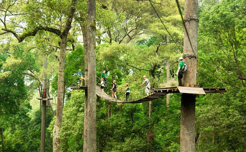 jungle-flight-zipline-chiangmai-14