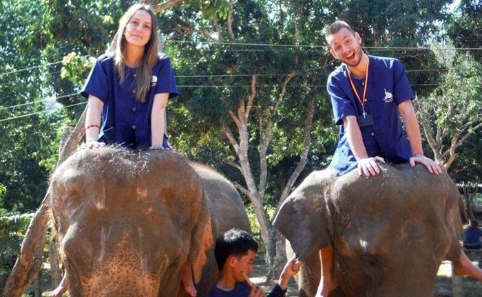 baan-chang-elephant-park-chiangmai-11