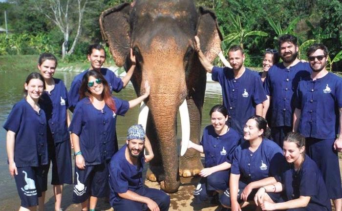 baan-chang-elephant-park-chiangmai-14