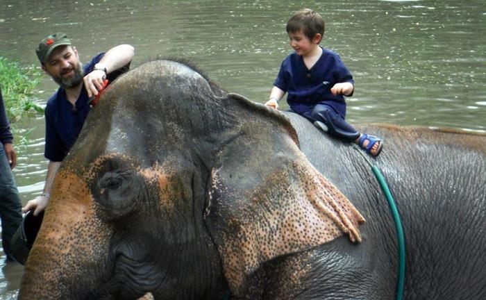 baan-chang-elephant-park-chiangmai-7