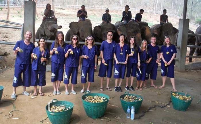 baan-chang-elephant-park-chiangmai-8