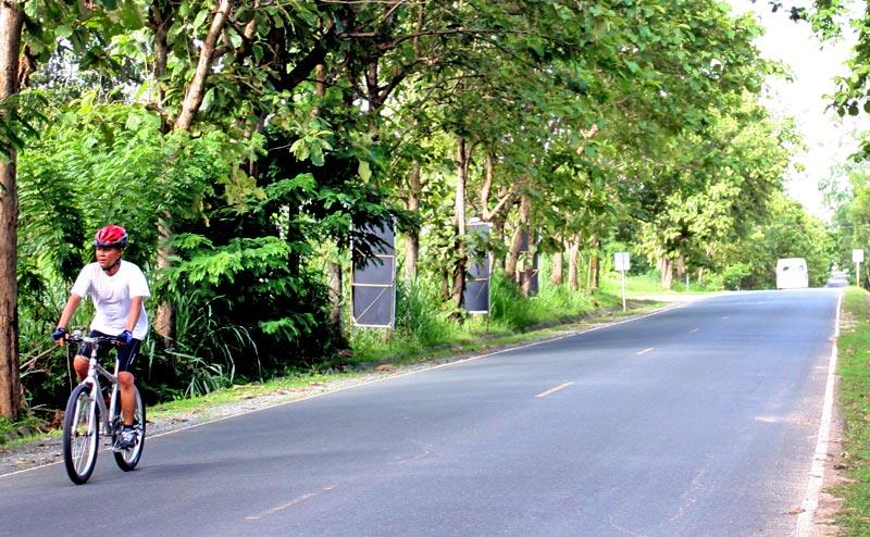 biking-chiangmai-24-1