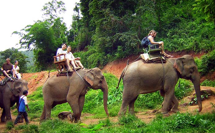 chiang-mai-trekking-adventure-elephant-riding