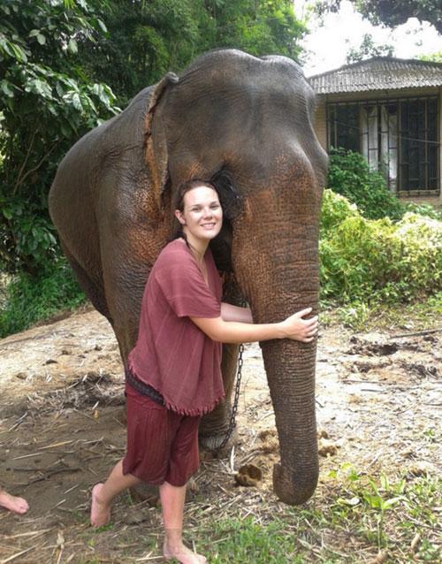 elephant-training-chiangmai-1