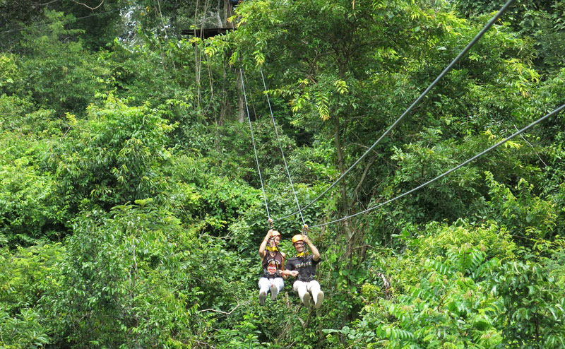 flight-of-the-gibbon-chiangmai-5