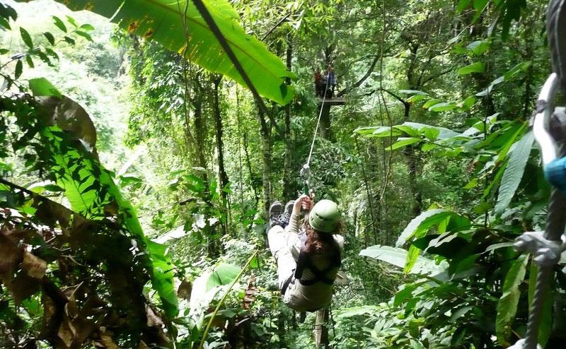 flight-of-the-gibbon-chiangmai-6
