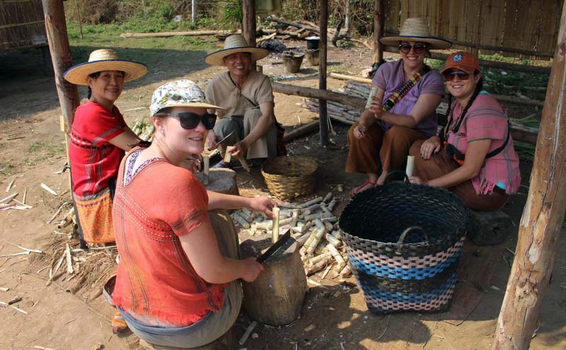 rantong-elephant-camp-chiangmai-1