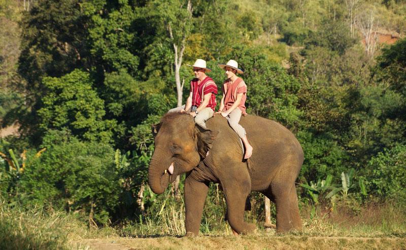 rantong-elephant-camp-chiangmai-18