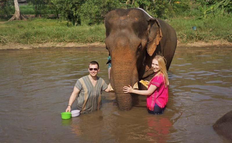 rantong-elephant-camp-chiangmai-3