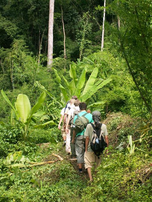 trekking-tour-chiangmai-2