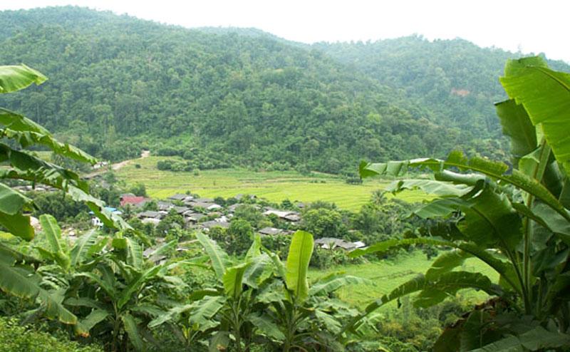 trekking-tour-chiangmai-6