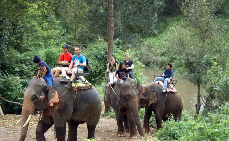 trekking-bamboo-rafting-chiangmai-13-1