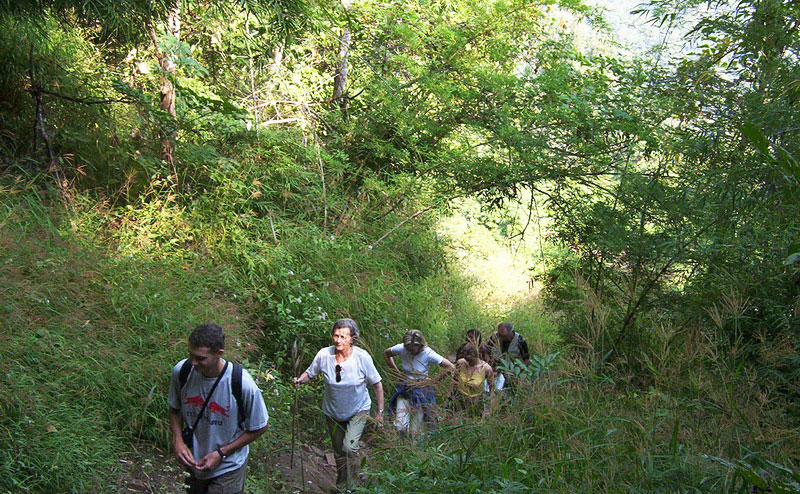 trekking-bamboo-rafting-chiangmai-4-1