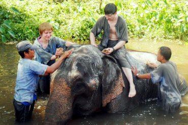 trekking-elephant-bathing-chiangmai-8