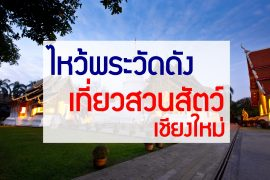 cover65