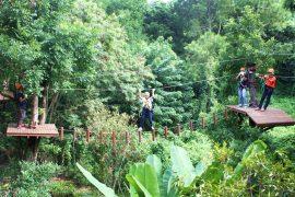 phoenix-adventure-park-chiangmai
