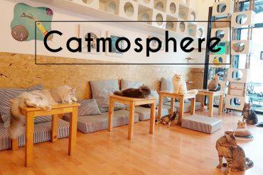 Catmosphere