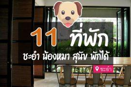 โรงแรม ที่พักชะอำ สุนัขพักได้